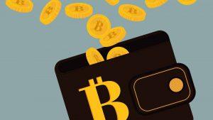 wallet valute digitali