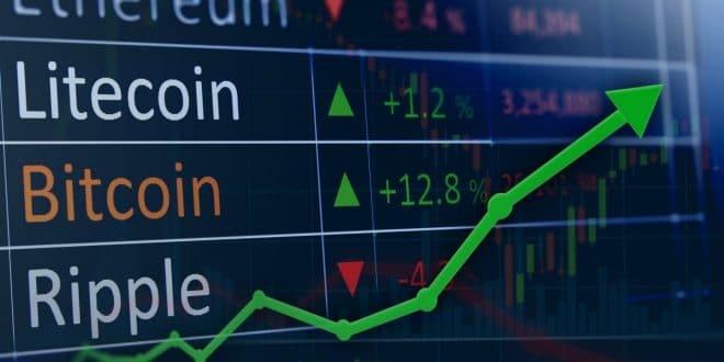 maggioranza degli utenti fedele a bitcoin