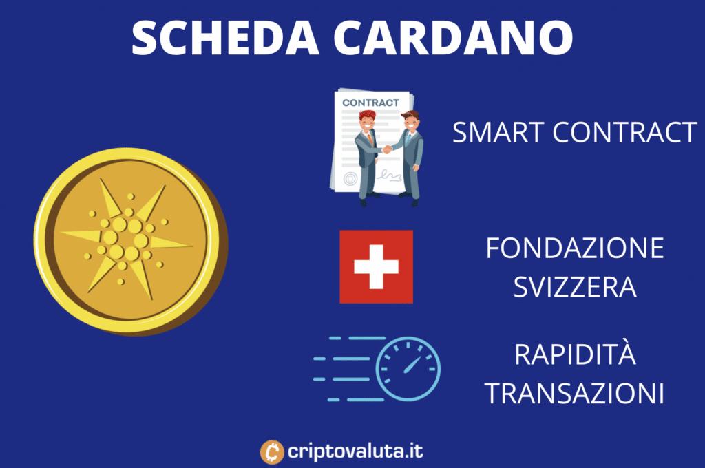 Scheda Tecnica Cardano Infografica