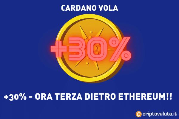 Cardano performance