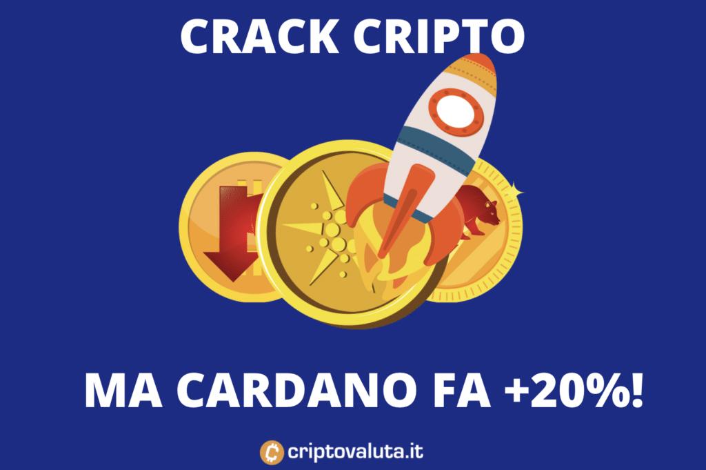 Cardano +20 con mercato bearish