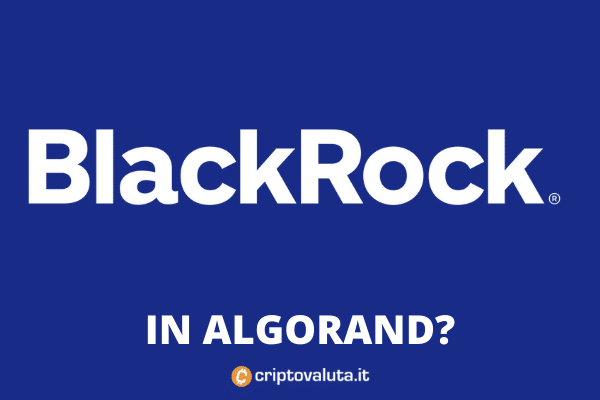 Rumor Blackrock Algorand