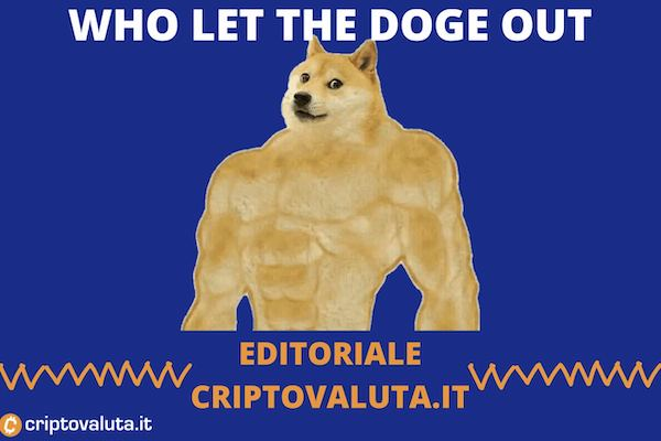 Dogecoin news settimanale