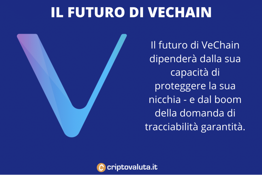 Esperti e analisti - futuro di VeChain - a cura di Criptovaluta.it