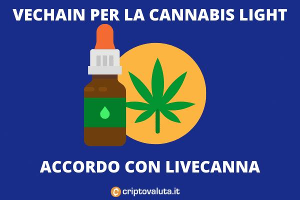 VeChain cannabis light