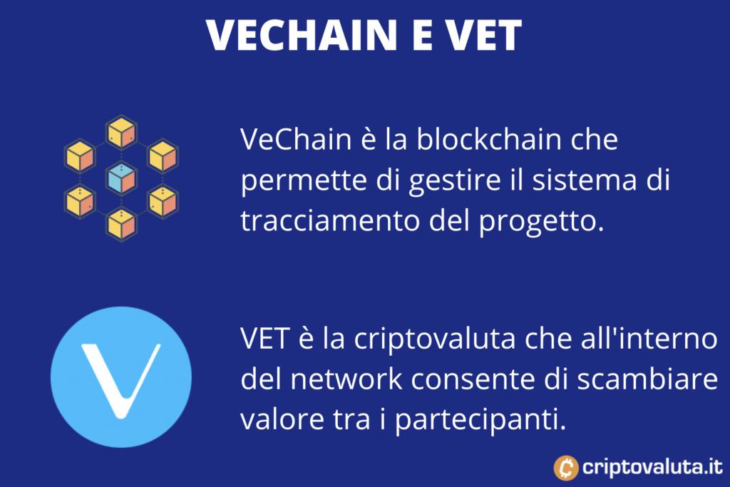 Vechain VS Vet - a cura di Criptovaluta.it
