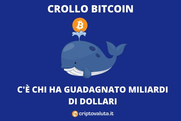 Balene Bitcoin - compere durante il crash