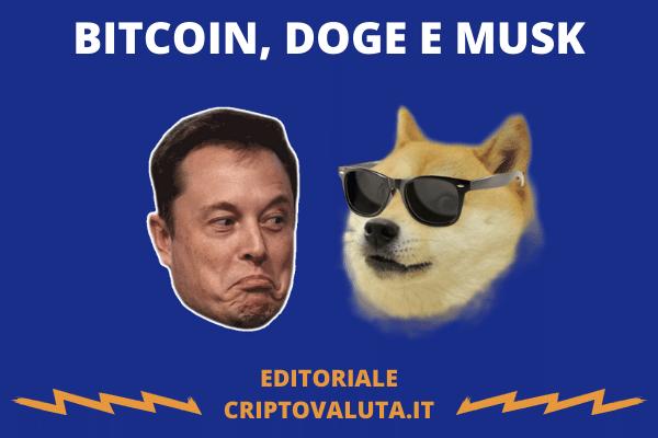 DOGE TESLA MUSK - editoriale Criptovaluta.it.