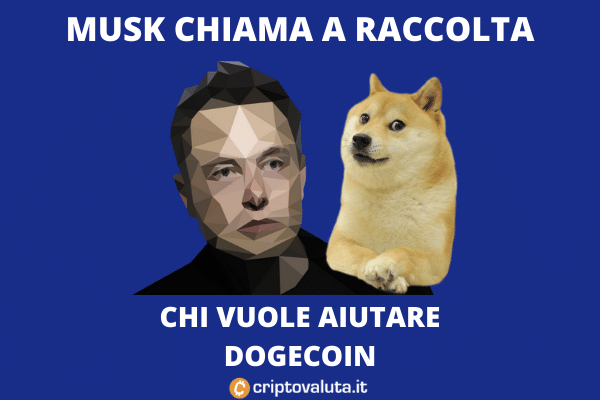 Musk torna su Dogecoin: aiutate lo sviluppo