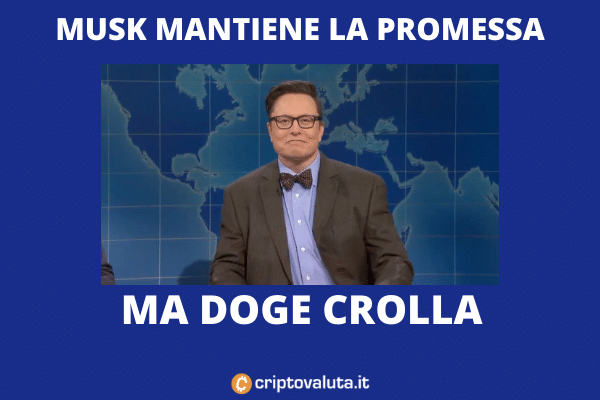 Doge coin crash con Musk