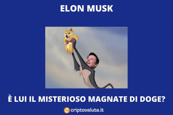 Dogecoin - elon musk wallet maggiore