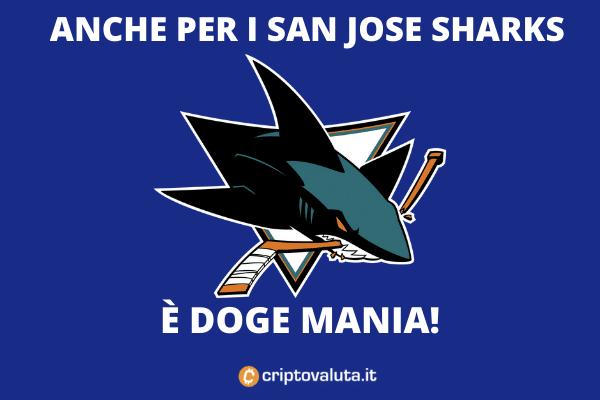 DOGE SHARK San Jose