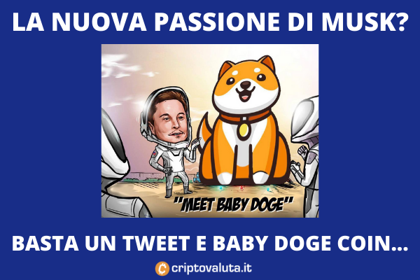 Tweet Musk Baby Doge Coin