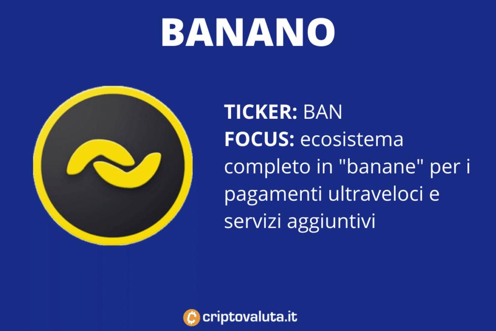 MemeToken Banano - la scheda di Criptovaluta.it