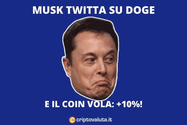 Musk tweet su Doge - +10%