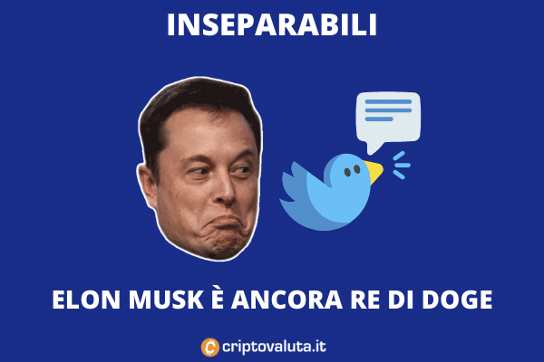 Doge - Elon Musk fa da Market Mover
