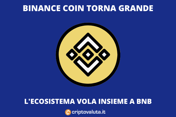 Binance Coin Run - di Criptovaluta.it