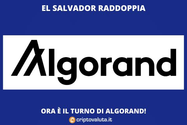 El Salvador chiude accordo con Algorand - e il token vola