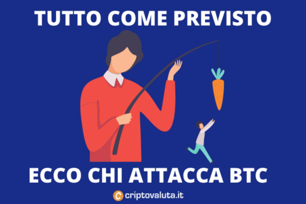 bitcoin previsioni quotidiane miglior broker per forex