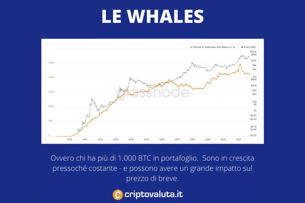 Whales Bitcoin - il loro vero impatto -