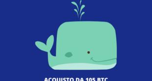 Bitcoin Balena - compra 105 BTC